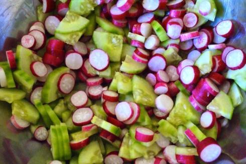 spring_mood_salade_concombre_radis